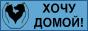 Группа помощи бездомным животным Хочу домой! г. Хотьково, Сергиев-Посад